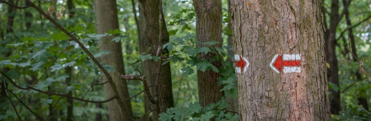 Czechs – the masters of hiking markers