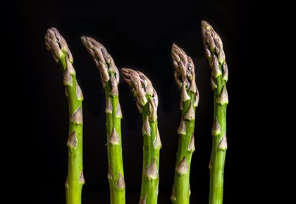 Give Moravian asparagus a chance!